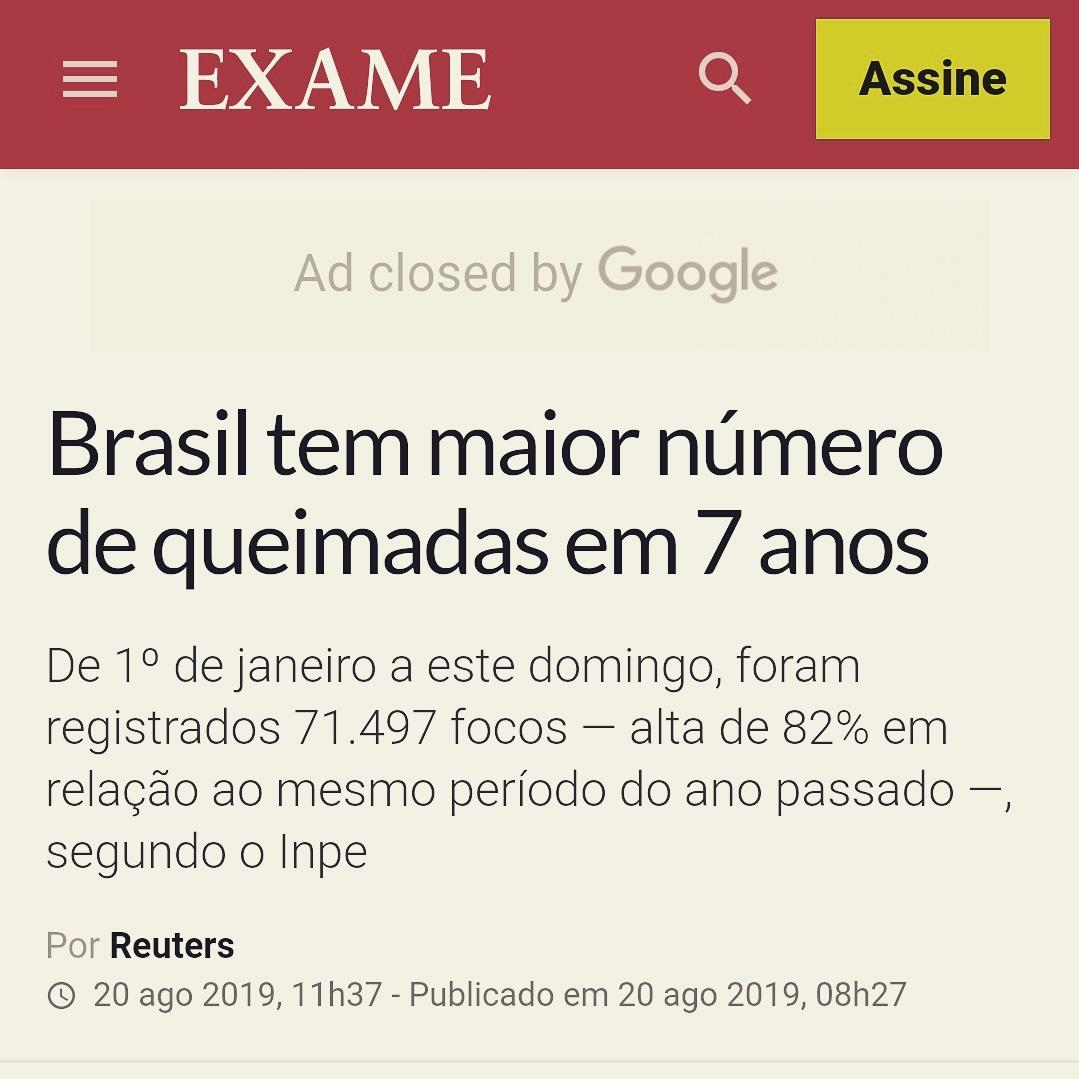 Desmatamento aumenta drasticamente no Brasil